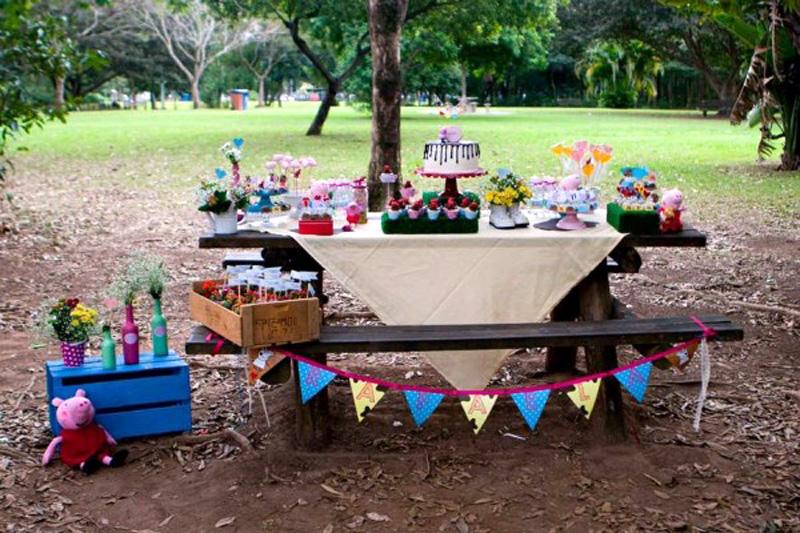 Festa de Aniversario no Parque Villa Lobos
